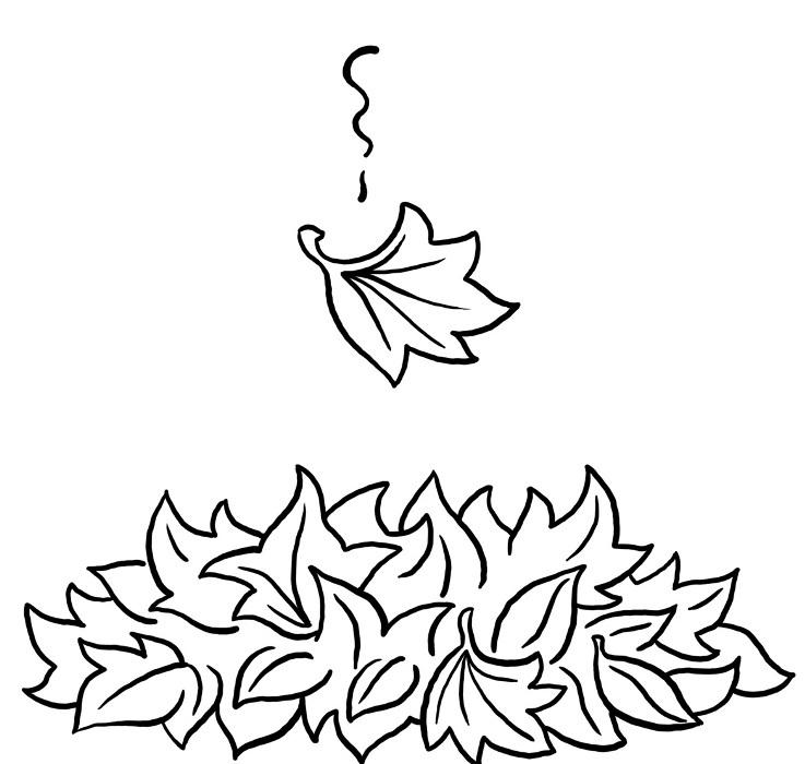 Foglie autunno foglie autunnali for Foto di alberi da colorare