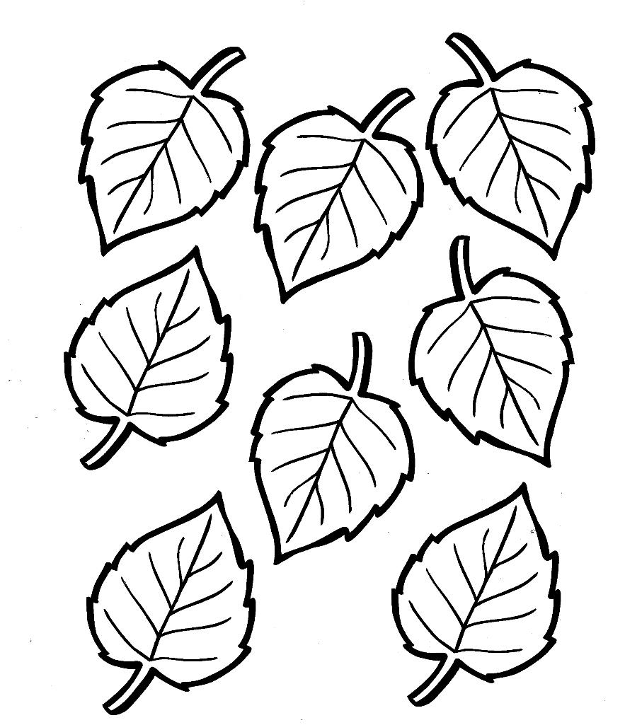 Foglie autunno foglie autunnali - Modello di foglia per bambini ...