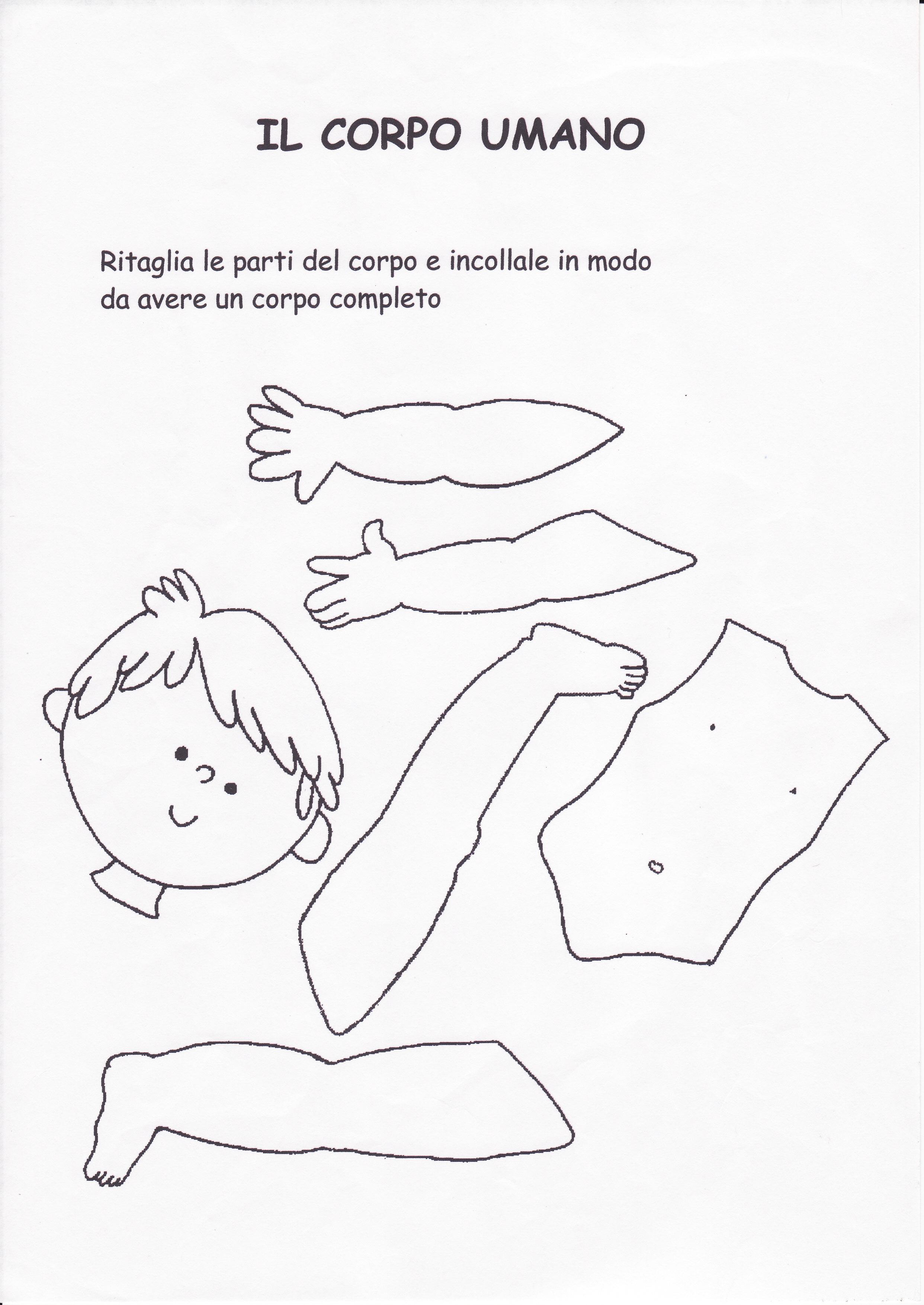 le parti del corpo umano disegni per bambini