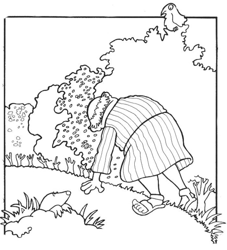 Bible Coloring Pages The Lost Sheep