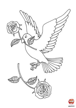 Colomba di pasqua da colorare colomba di pasqua disegni - Coloriage colombe ...